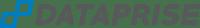 Dataprise_Managed_Services_logo